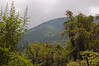 2010 Rwanda-10-karisoke-trek-71_15131856242_o