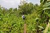 2010 Rwanda-10-karisoke-trek-79_14945544759_o