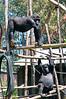 2010 Rwanda-13-mgvp-orphanage-16_14945640379_o