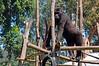 2010 Rwanda-13-mgvp-orphanage-07_14945772917_o