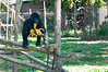 2010 Rwanda-13-mgvp-orphanage-14_15132341825_o