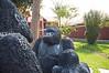 2010 Rwanda-06-hotel-ruhengeri-05_15129057441_o