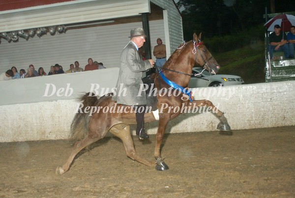 CLASS 13  AMATEUR OWNED & TRAINED