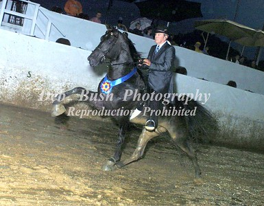 CLASS 15  AMATEUR 50 AND OVER