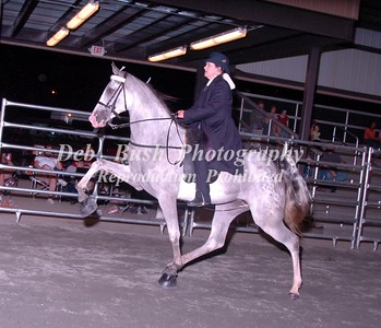 CLASS 33 AMATEUR 2 YR OLD