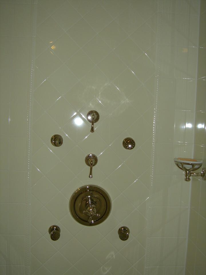 Shower controls
