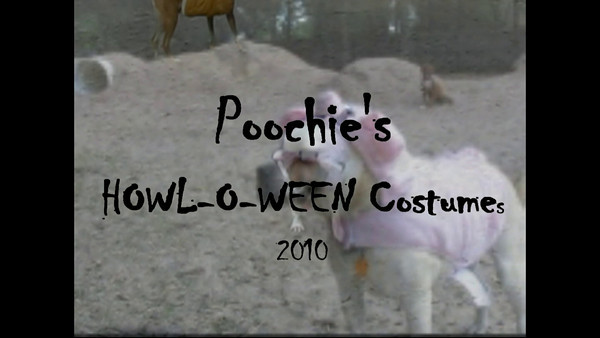 Howl-o-ween Costume Video