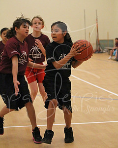 2010 Youth Sports
