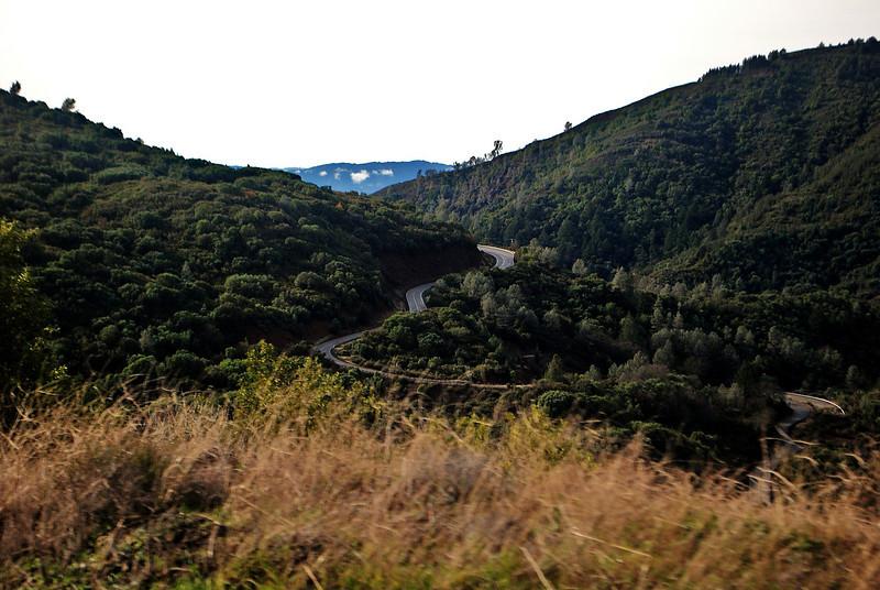 01-02-10 Geyser Roads DSC_7491.JPG