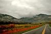 01-02-10 Geyser Roads DSC_5918.JPG