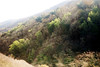 01-02-10 Geyser Roads DSC_7682.JPG