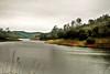 01-02-10 Geyser Roads DSC_6440.JPG