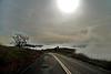 01-02-10 Geyser Roads DSC_7368.JPG