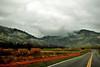01-02-10 Geyser Roads DSC_5917.JPG