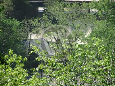 05-03-2010_Flood in OC_OCN