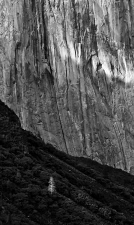 05_1920_Yosemite2