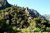 08-21-10 Feather River-Mt Lassen NP-Mt Shasta