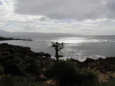 Pupukea Beach