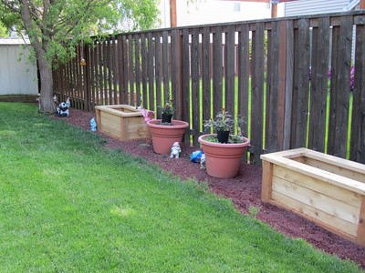 Backyard planters and red lava rock hiding French drain
