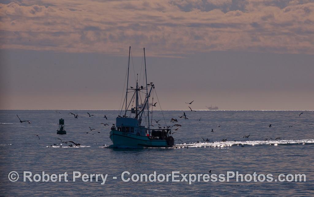 The fishing vessel Kay-D returns to Santa Barbara Harbor.