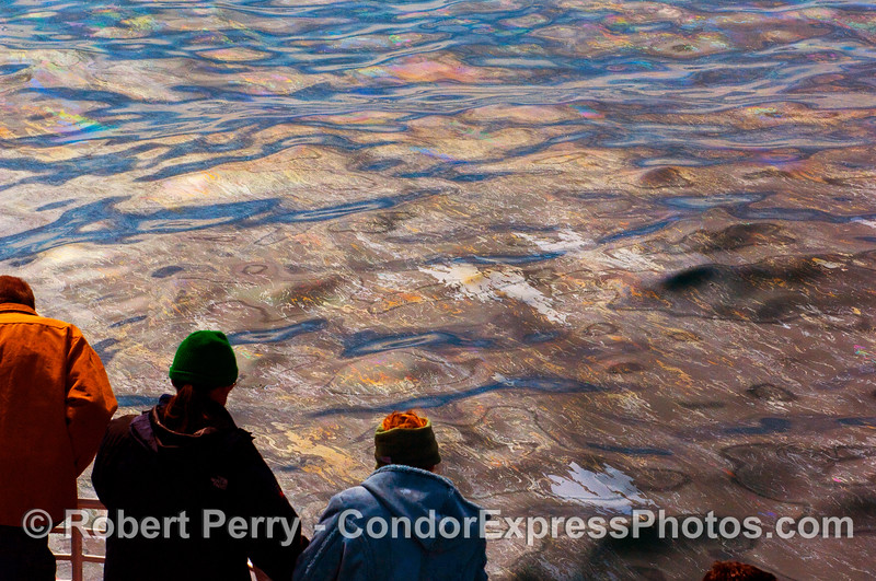 Good look at the surface oil slick from the natural seeps at Coal Oil Point (aka, Counters Point).