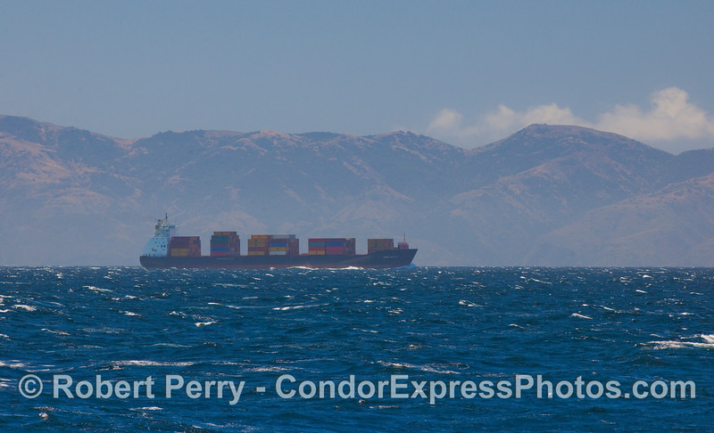 The container vessel MSC Natal heading northbound in the Channel.