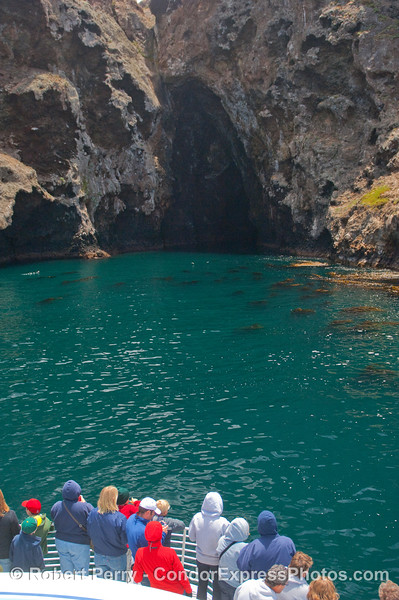 Whalers enjoy a short break from the cetaceans with a visit to the famous Painted Cave on Santa Cruz Island.