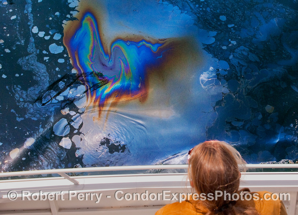 Like a metalic ghost rising from the sea - abstract oil patterns.