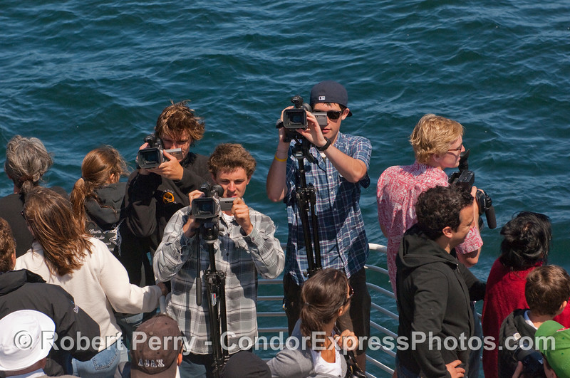 Cinematographers - not filming a whale at the moment.