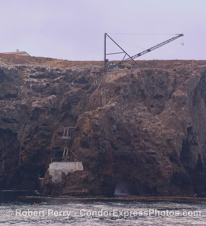 Landing Cove 2010 09-18 Anacapa Island - 009