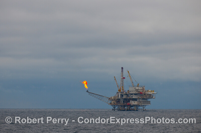 Oil Platform Gail shows a huge flame as it burns off natural gas.