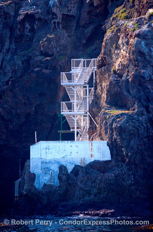 The new stairs at Landing Cove, East Anacapa Island....two weeks old....dropped on location by a navy helicopter.
