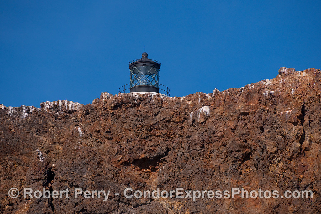 Anacapa Light peaks over the volcanic cliff face on the southern side of East Anacapa Island.