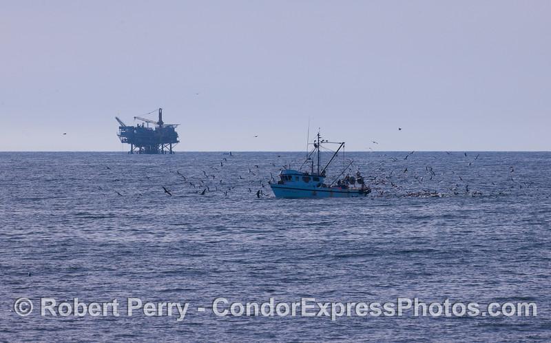 Commercial fishing vessel 'Golden Eagle' with Platform Habitat in back.