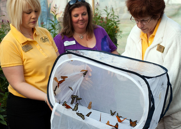 3/21 - Avow Hospice Butterfly Release