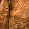 The bark of a Baobab tree. Feels and looks a lot like skin.
