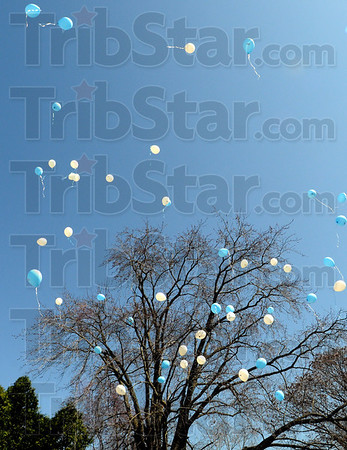Up and away: Several balloons float skyward Thursday afternoon during an Autism event at Deming Park.