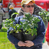 Good start: Connie McCammon leaves the Earth Day festivities at St. Mary-of-the-Woods with a pair of tomato plants.