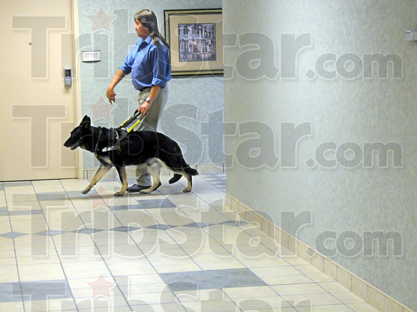 Berg at work: Randy Berg and his service dog navigate the halls of Hamilton Center Thursday afternoon.