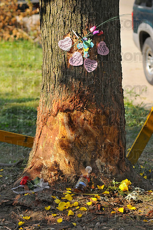 Remembered: A makeshift memorial has been set up at the site of an early Sunday morning accident along 9th street between Hulman and Lockport streets. The yellow petals and sweet tea were there because of the victim's fondness for the color yellow and the tea,