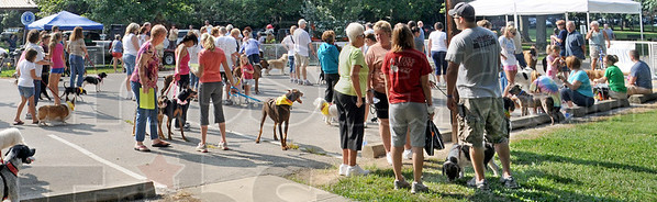Annual bark: The third annual Bark in the Park at Deming Park Saturday morning brought an array of different breeds to the event.