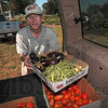 Tribune-Star/Joseph C. Garza<br /> From the garden straight to the kitchen: Phil Small, a master gardener with the Wabash Valley Master Gardeners Association, loads a box of vegetables into John Hancewicz's vehicle for delivery to the St. Patrick's Parish Soup Kitchen Monday at the Wabash Valley Fairgrounds.