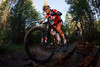 (Leadville, Colorado, Aug. 14, 2010)<br /> Rebecca Rusch on her way to winning the women's division, here leading Amanda Carey over a creek crossing.  The Leadville Trail 100 Mountain Bike Race in Lake County in and near Leadville, Colorado, on Saturday, Aug. 14, 2010.<br /> STEVE PETERSON