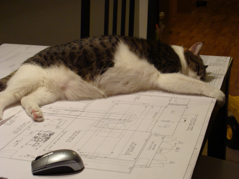 designing buildings makes me tired