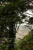 Kamala Beach peers through the smog and jungle foliage far below us.