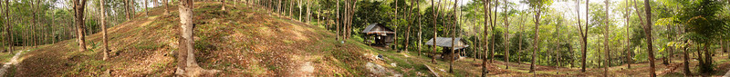 A 360 view of the middle of a mountainous rubber tree plantation, with a couple small huts protecting peices of equipment from the elements.