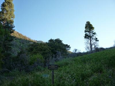 Bear Canyon 8-22-2010
