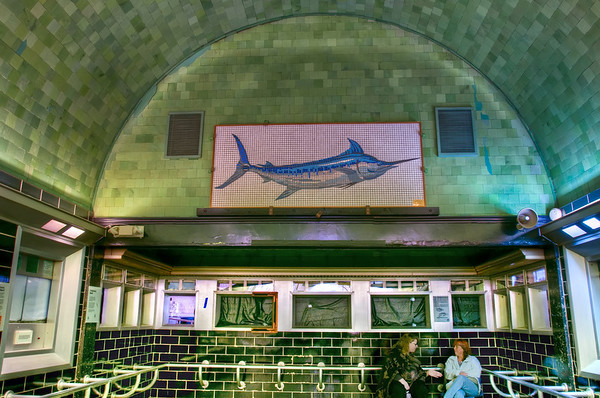 The tile mural on the end of the aquarium.