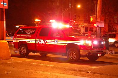 Bronx 8-8-10 035