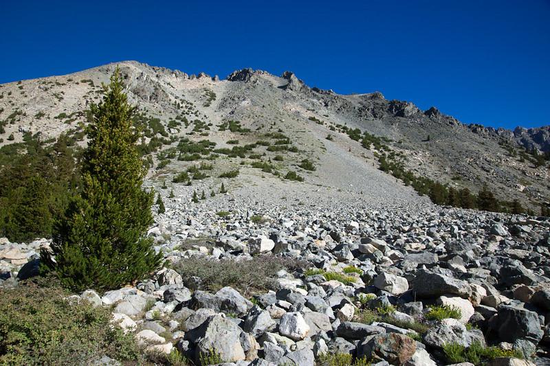 The slopes of Kearsarge Peak